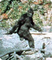 bigfoot_hoax2.jpg