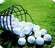 dog_golfball.jpg
