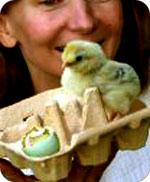 egg_hatch.jpg