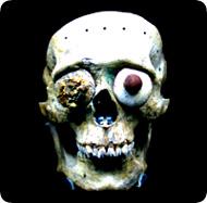mayan_skull.jpg