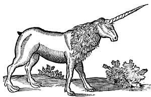 unicorn_7.jpg