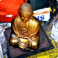 http://x51.org/x/images2005/yamashita_gold1.jpg